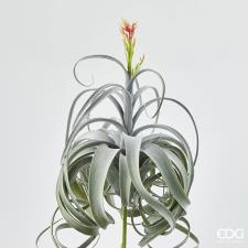 Fiore Artificiale Edg Tillandsia Sage
